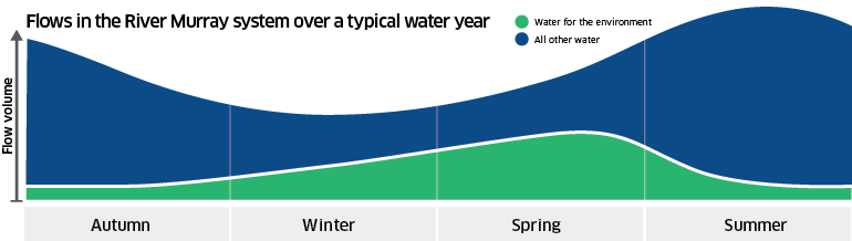 Seasonal flow in the River Murray System, highlighting that water for environment flows are lower in summer-autumn, and higher in winter-spring.
