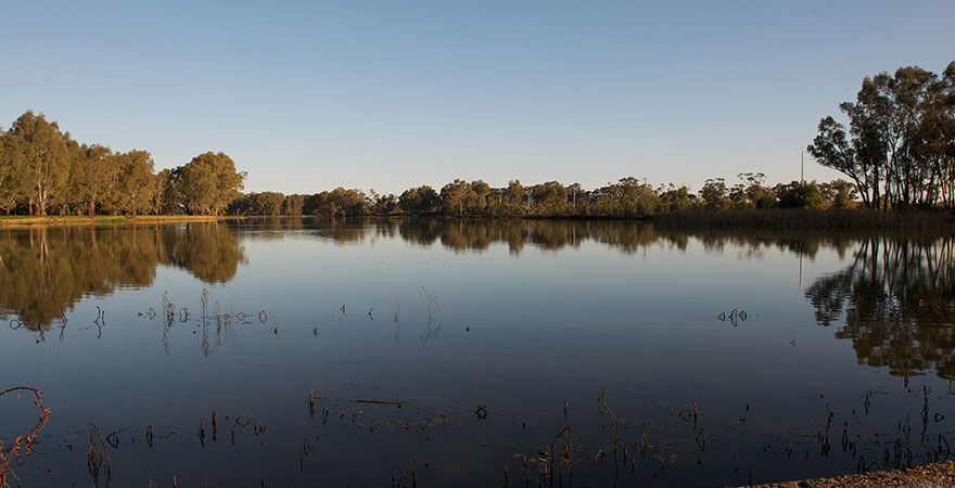 Photo of the still water of the Campaspe Weir at sunset.