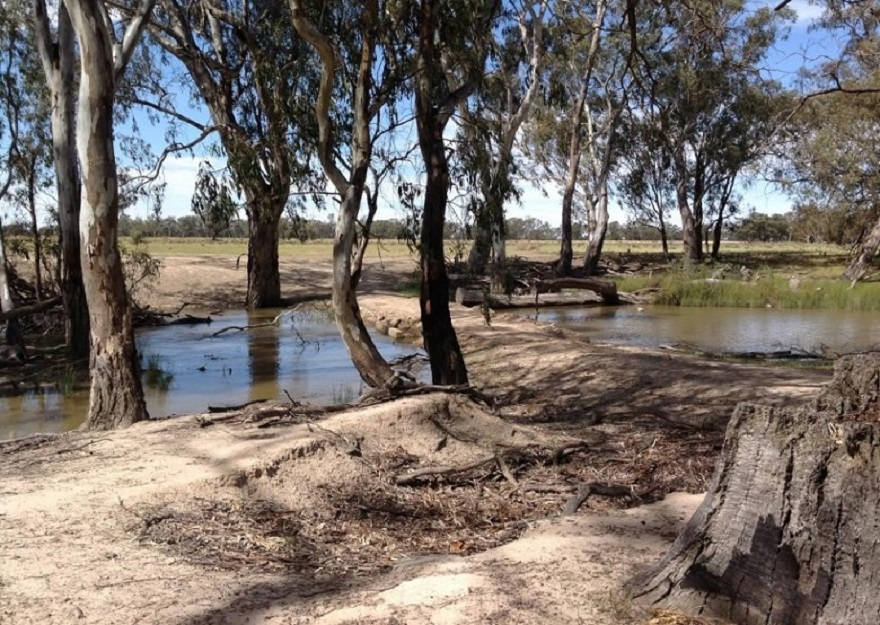Low level farm crossing on the Wakool River.