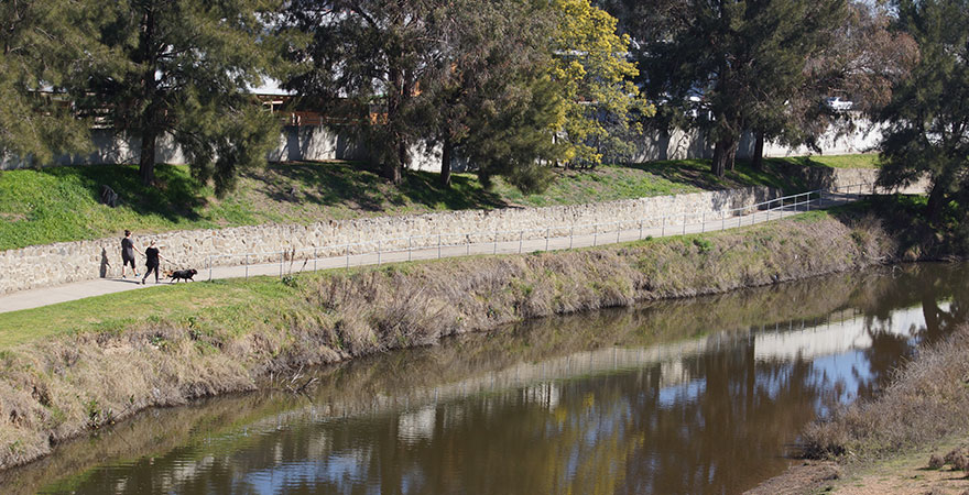 Photo of two people in the distance walking their dogs along the Macquarie River.