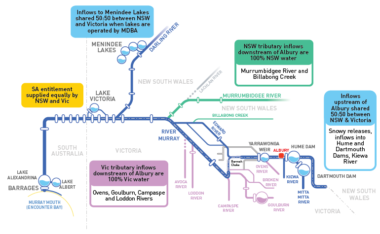 An illustration showing who owns the water in the River Murray and its tributaries. Menindee lakes are shared 50:50 between New South Wales and Victoria when lakes are operated by the MDBA. NSW tributaries downstream of Albury are 100% New South Wales. Vic tributary inflows downstream of Albury are 100% Victoria's water. Inflows upstream of Albury are shared 50:50 between New South Wales and Victoria. The South Australian entitlement is supplied equally by New South Wales and Victoria.