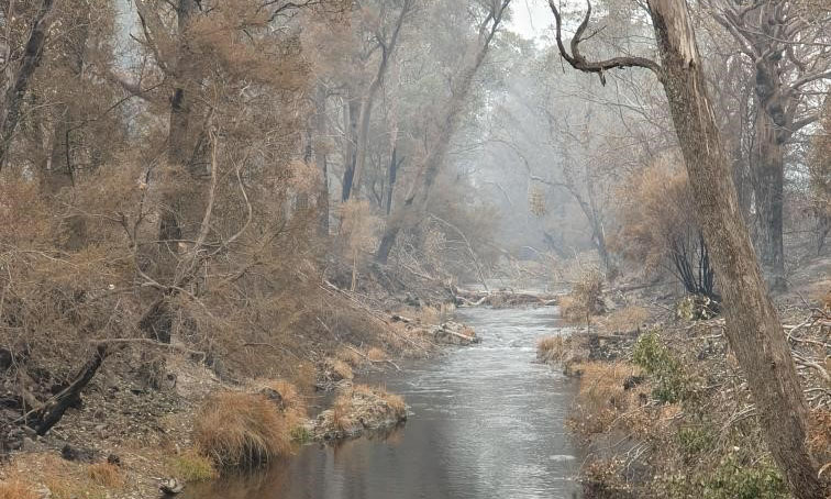 Nariel Creek, Upper Murray catchment - Hugo Bowman, MDBA