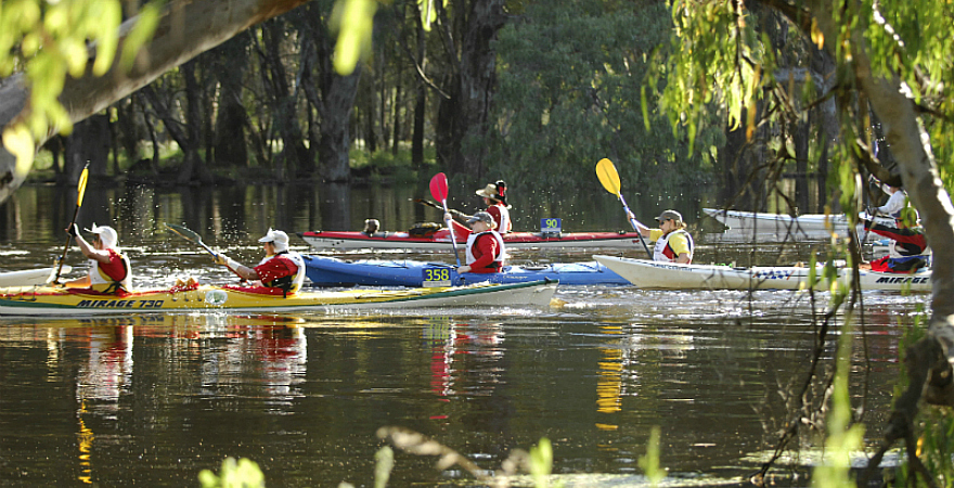 People canoeing along the Murray in the Murray Marathon.