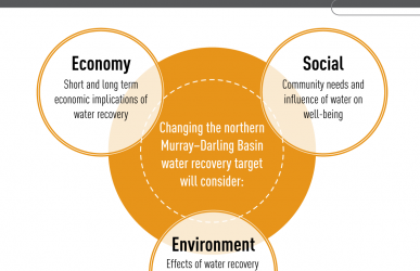 An information graphic showing how the environment, economic and social research will be considered in the northern basin review.