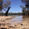 Murray River at Bottle Bend