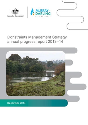 Constraints Management Strategy Annual Progress Report to Ministers 2014