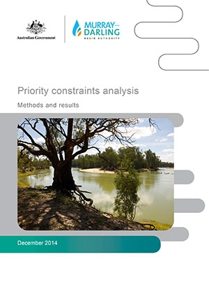 Constraints Management Strategy Prefeasibility Priority Constraints Analysis Report