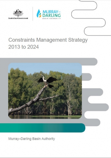 Constraints Management Strategy 2013 to 2024
