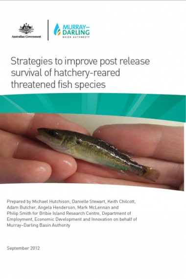 Strategies to improve post release survival of hatchery-reared threatened fish species