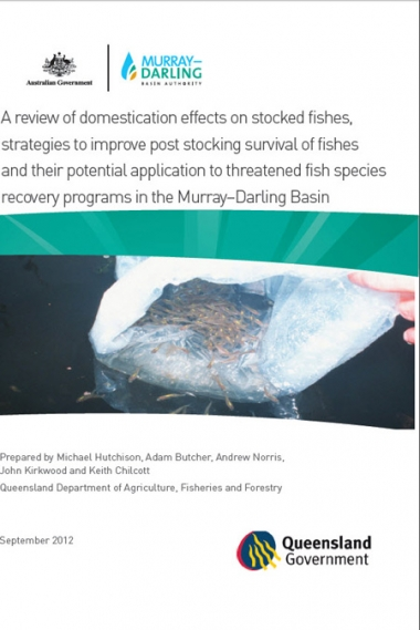 A review of domestication effects on stocked fish in the Murray–Darling Basin
