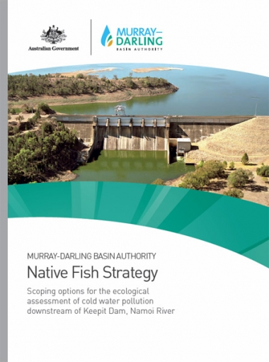 Scoping options for the ecological assessment of cold water pollution downstream of Keepit Dam
