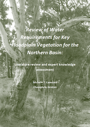 Literature review on water consumption