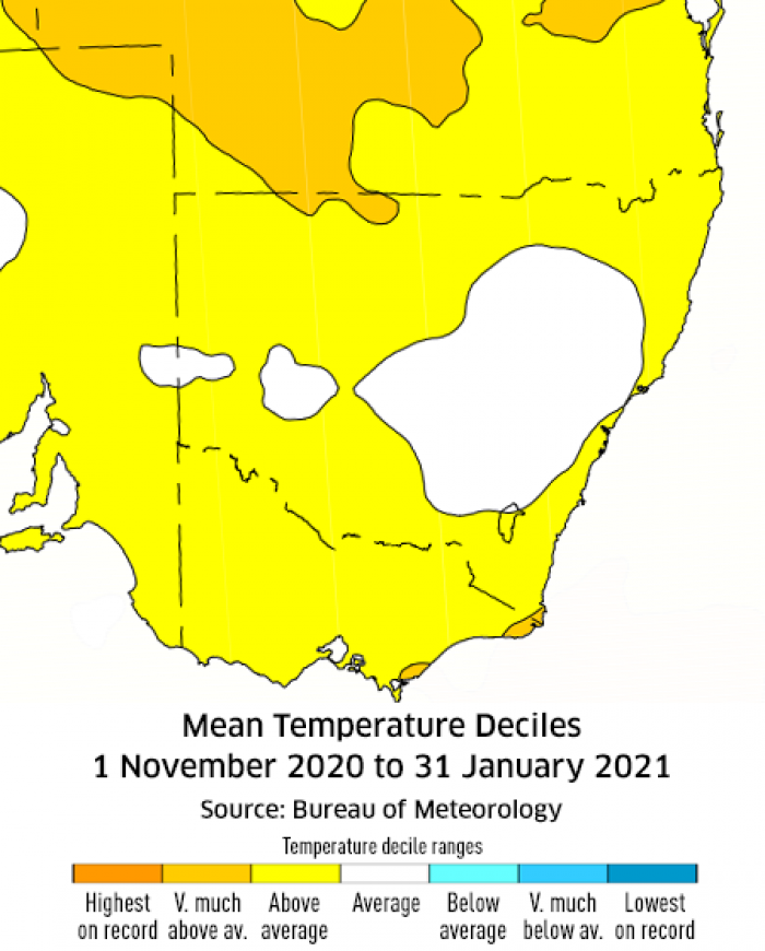 Temperature deciles for November 2020 to January 2021