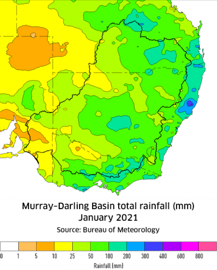 Rainfall totals for January 2021